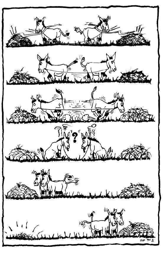 ânes plus intelligents que les humains