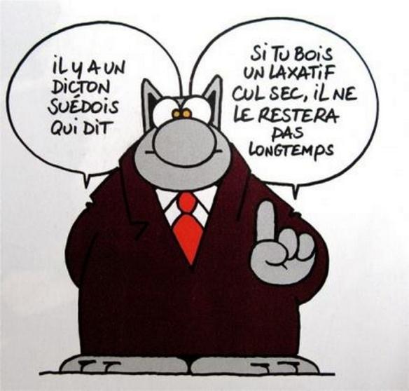Cul sec Le Chat