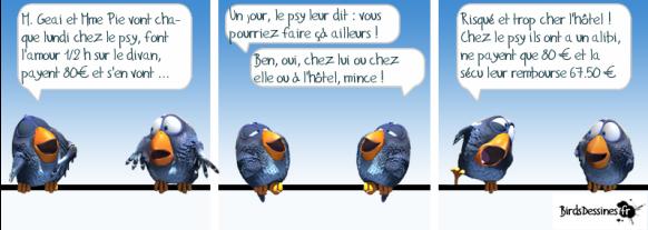 psy baise birds