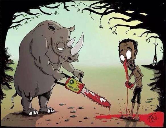 Rhino massacre