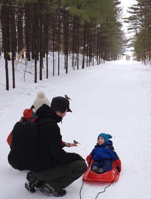 Les mésanges autour de Jacques et de ses petits enfants au parc de Oka - photo Madeleine