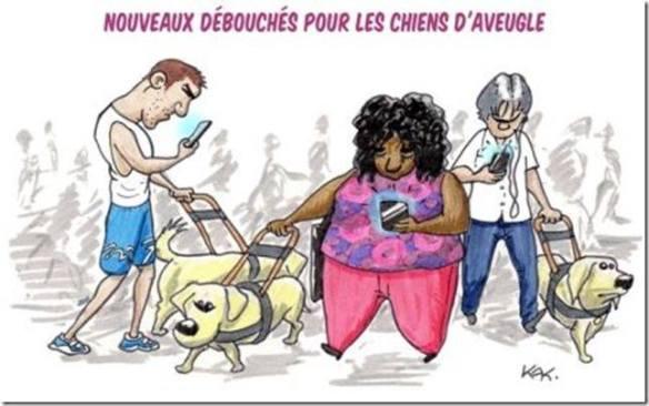 chiens cellulaire