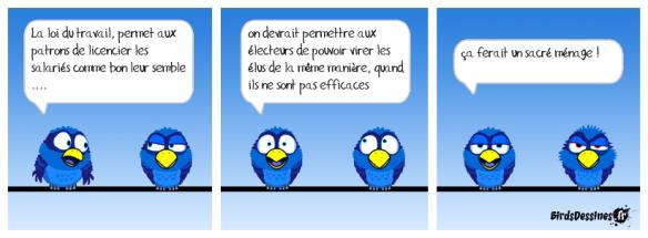 hamster_la-meme-loi-pour-tous_1457424497