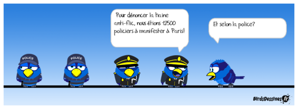 mahoi_selon-les-syndicats-de-police_1463594949
